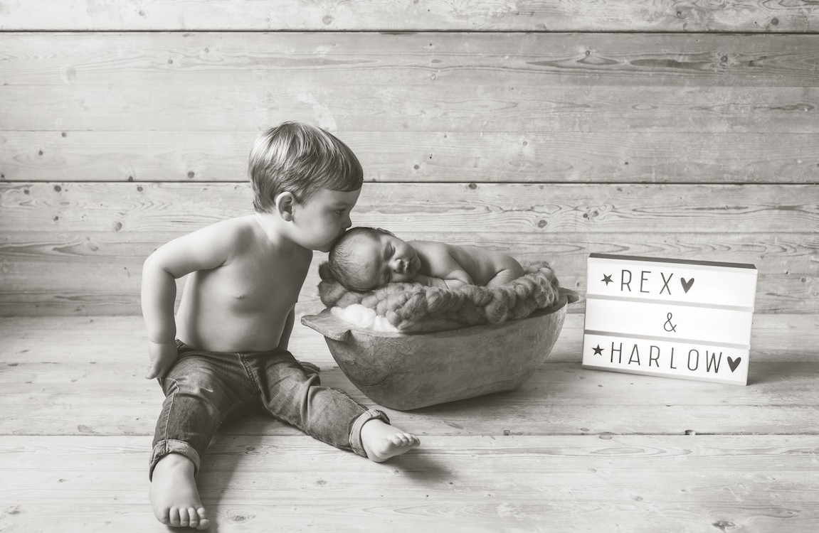 Harlow & Rex - Brothers in arms