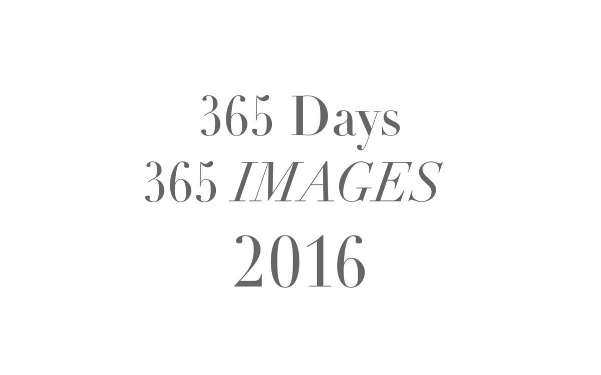 365 Days...365 Images... 2016 | My retrospective